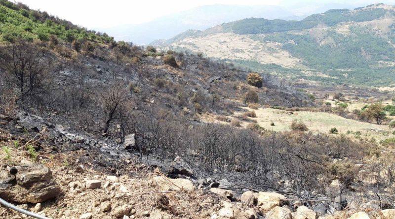 Incendi, a San Mauro Castelverde la Regione realizza il nuovo acquedotto
